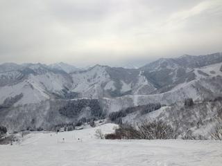 写真 2013-02-12 9 59 25.jpg